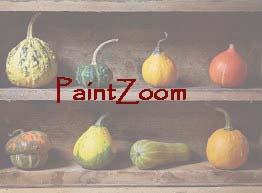PaintZoom
